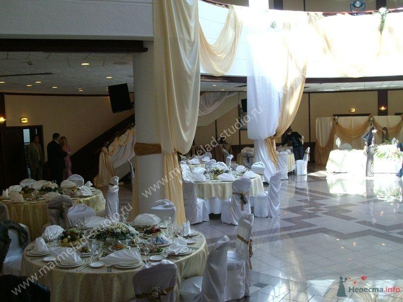 Фото 25801 в коллекции Оформление свадьбы тканями
