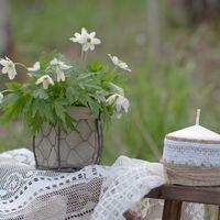 рустикальный стиль природа оформление фотосессии love story свечи