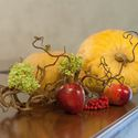 осень ягоды оранжевый