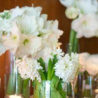 букет из белых цветов гиацинт