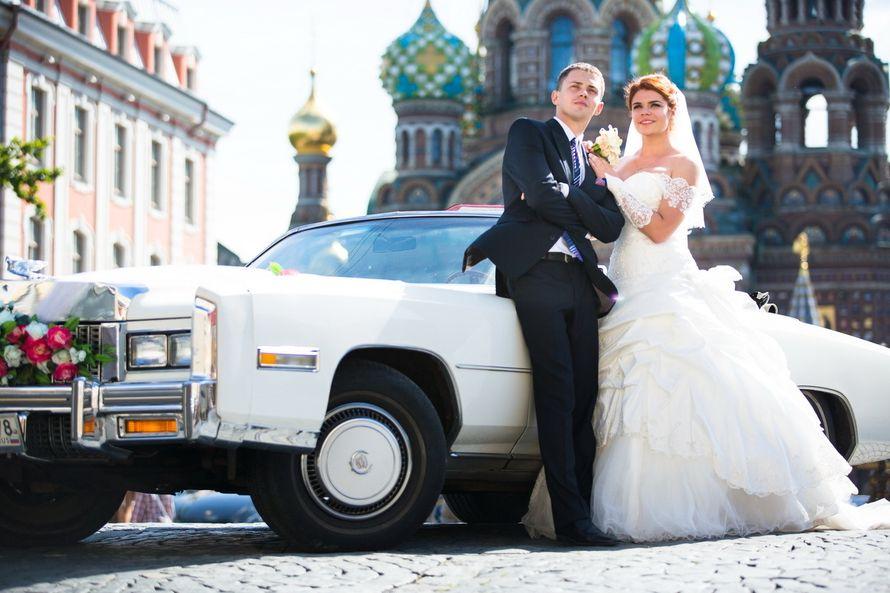 Фото 6742570 в коллекции Портфолио - Фотограф Антон Басов