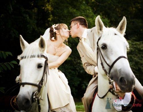 Фото 12776 в коллекции Свадебный - Невеста01