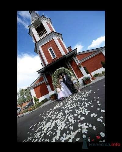 """Фото 13222 в коллекции Мои фотографии - Агентство """"Most"""" - организация свадеб"""