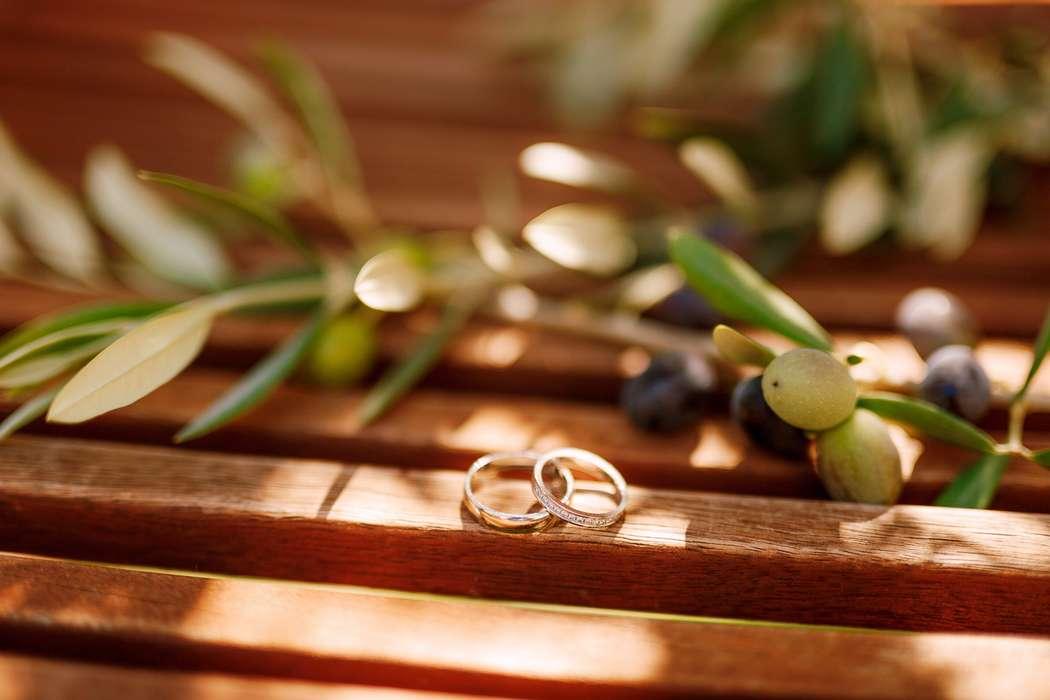 Wedding photoshoot in Montenegro  - фото 18285424 Фотограф Владимир Надточий