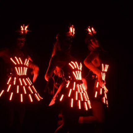 Представление светодиодного шоу