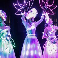 Светодиодное шоу Цветы