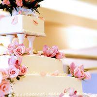 торт мечты - полцарства за такой!