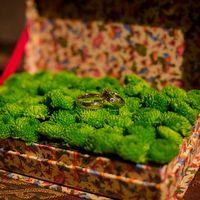 Коробочка-подставка для колец с зелёными хризантемами