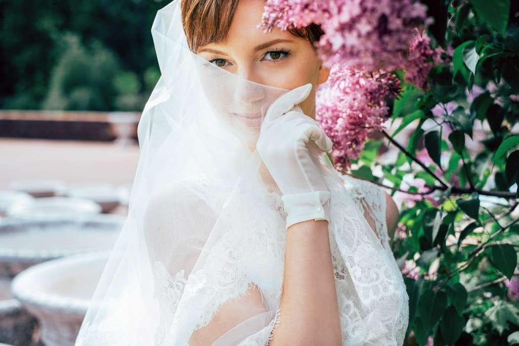 Волосы невесты покрывает тонкая фата с кружевным краем а на руках белые прозрачные перчатки - фото 2413611 Фотограф Александр Панфилов