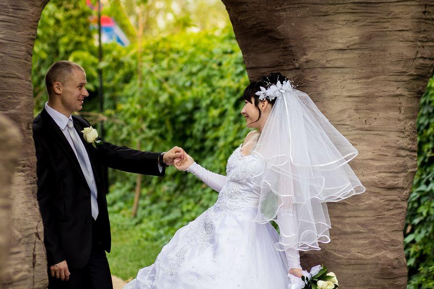 Фото 2038040 в коллекции Свадьба Светланы и Александра - Свадебный Фотограф Наталья Сергунова