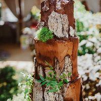 для свадьбы в стиле рустик, топической свадьбы торт с шоколадной корой и мхом из молекулярного бисквита, стоимость 1900 Р/кг - закажите торт за 1 месяц или ранее и получите каждый 3-ий кг в подарок