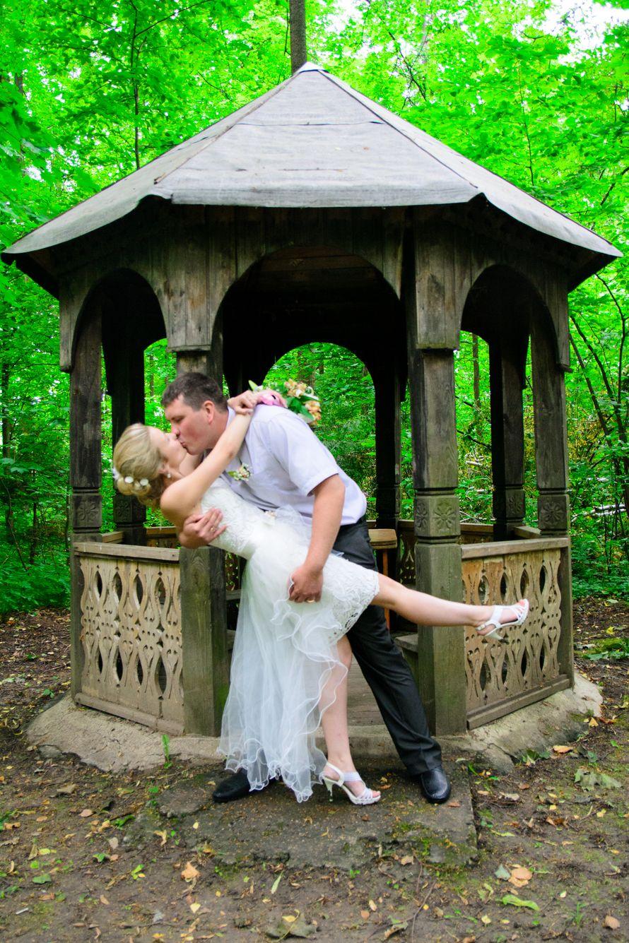 Фото 3102847 в коллекции Свадьба 06.07.14 - Фотограф Моисеев Игорь