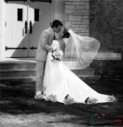 Фото 18545 в коллекции wedding pictures