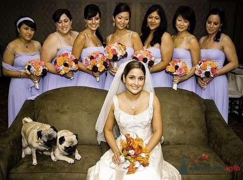 Фото 18892 в коллекции wedding pictures - YuBinLi