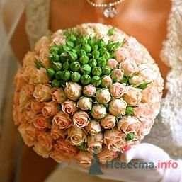 Фото 25307 в коллекции Flowers - YuBinLi