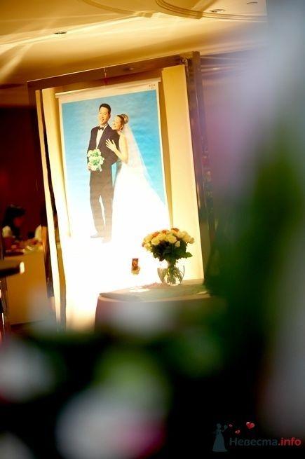 Фото 44981 в коллекции taiwan wedding - YuBinLi