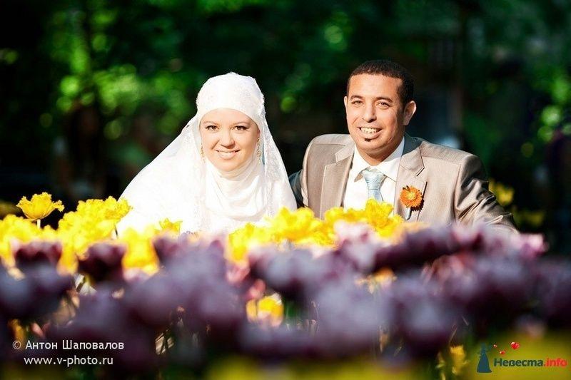 Фото 108604 в коллекции Ольга (ribca_saghira) и Абдельхади. 13 мая 2010. - Свадебные фотографы StoryOfMoments