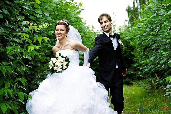 Жених и невеста, взявшись за руки, бегут по лесу - фото 46263 Студия свадебной фотографии Сергея Рыжова