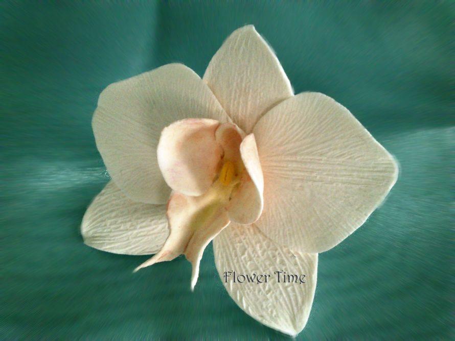"""Фото 2277832 в коллекции Мои фотографии - """"Венерин башмачок"""" - цветочные аксессуары"""