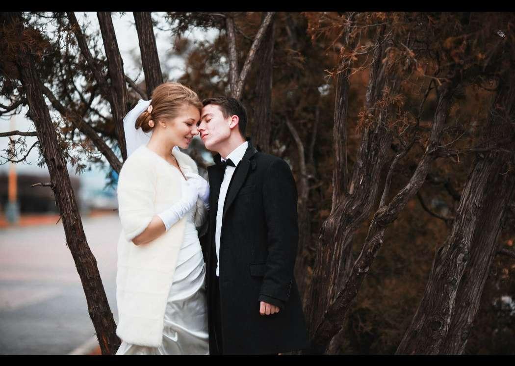 Фото 2084666 в коллекции Свадебная подборка фотографий - Фотограф Roman Barabanshchikov