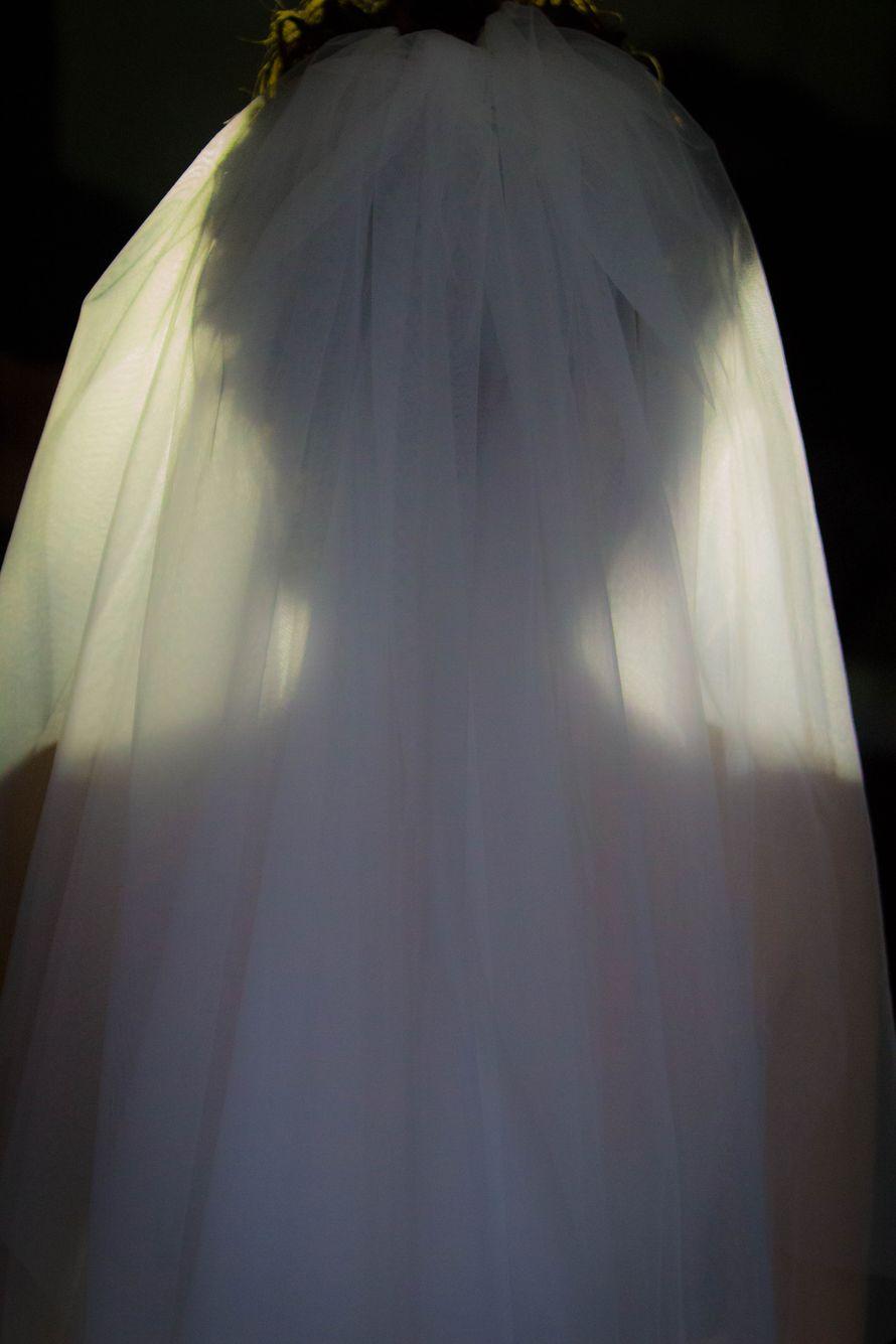 """Фото 2099074 в коллекции Мои фотографии - Фотограф, Дом невесты """"Шикарная Свадьба"""""""