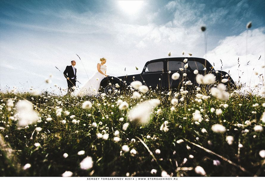 Фото 4064601 в коллекции Портфолио - Сергей Торгашинов - свадебный фотограф
