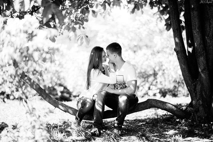 воробушки на ветке) - фото 2380996 Свадебный Фотограф Александр Поляков