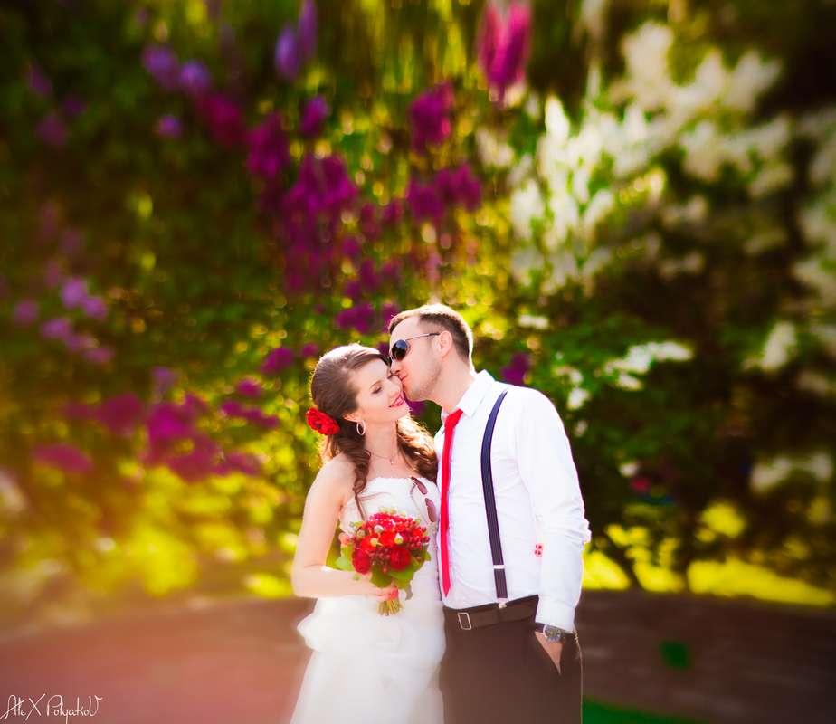 Фото 2381032 в коллекции Мои фотографии - Свадебный Фотограф Александр Поляков
