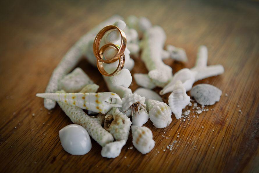 Золотые обручальные кольца, выполнены в классическом стиле на фоне морских ракушек и камушек. - фото 2192808 Dave Primov - protographer