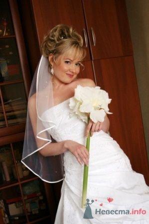 Фото 25657 в коллекции Свадьба А+А (25 апреля 2009) - Annet
