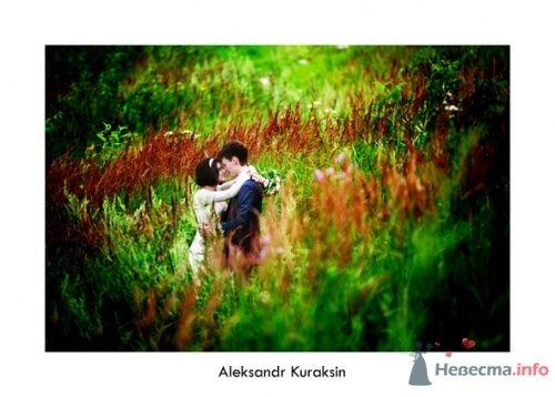 Фото 14535 в коллекции свадебные фотографии - Kuraksin Photo - фотоуслуги