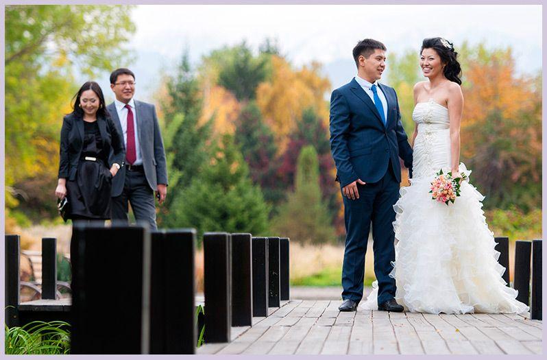 Фото 2199028 в коллекции Мои фотографии - TVC - свадебное видео