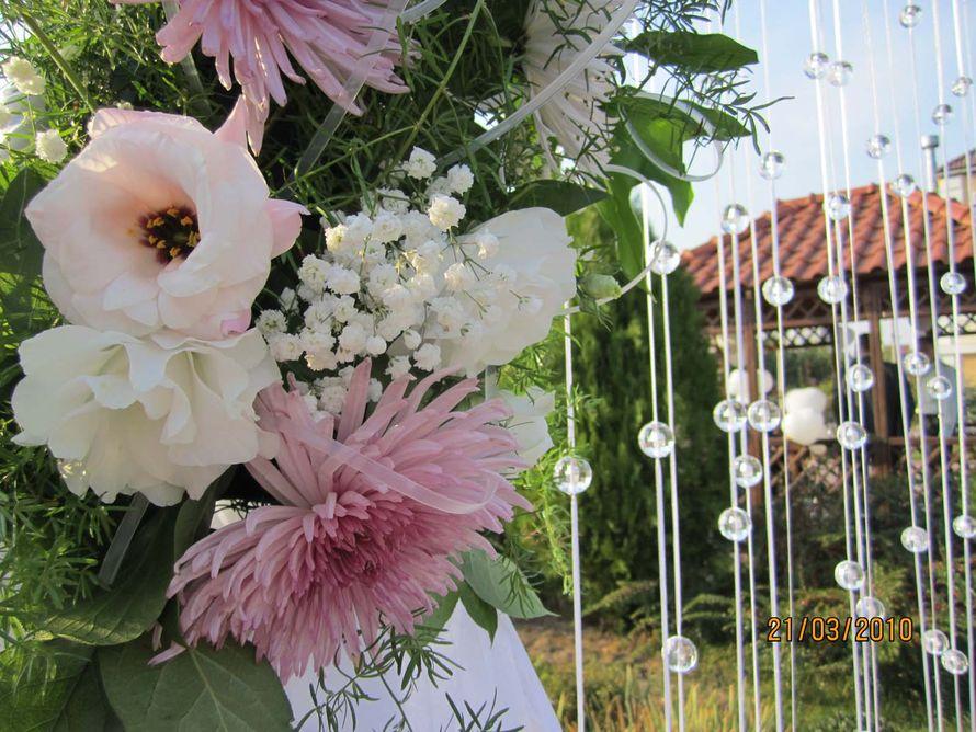 Фото 2237056 в коллекции Наши свадьбы - Sweet Art - свадебное агентство