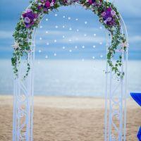 арка для выездной регистрации с живыми цветами