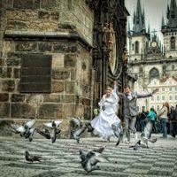 Свадьба в Праге -
