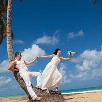 Высокие пальмы на пляже Макао