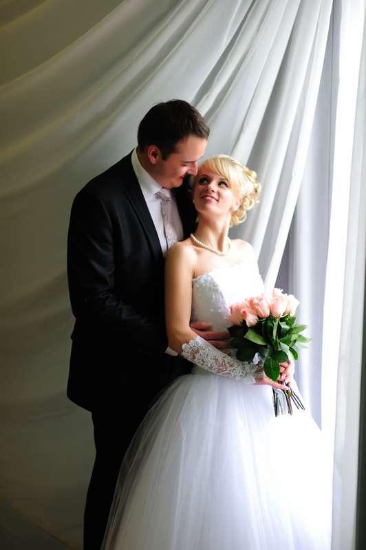 больше мурманск фотографы на свадьбу нас обнаружите