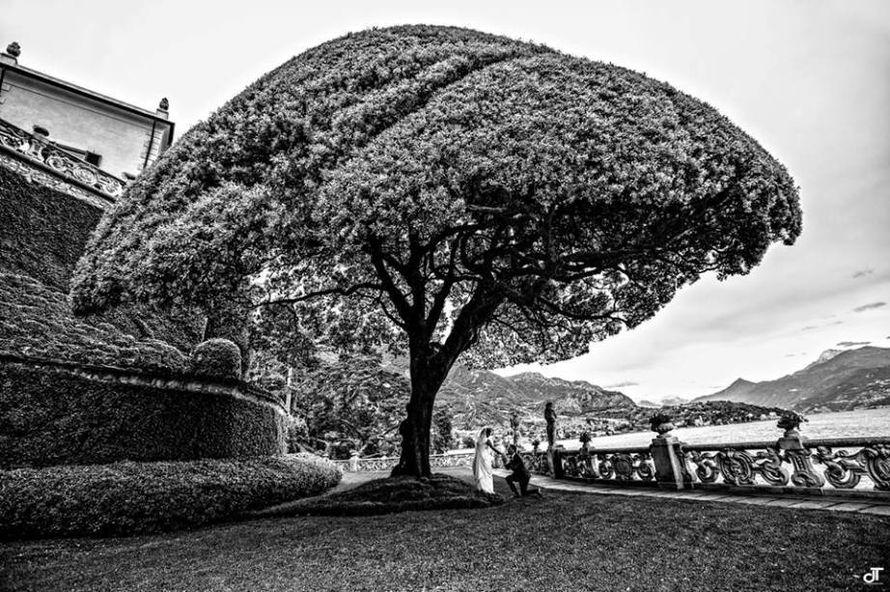Свадьба на роскошной вилле Бальбьянелло. Италия, озеро Комо - фото 7296942 Italia Viaggi - организация свадеб