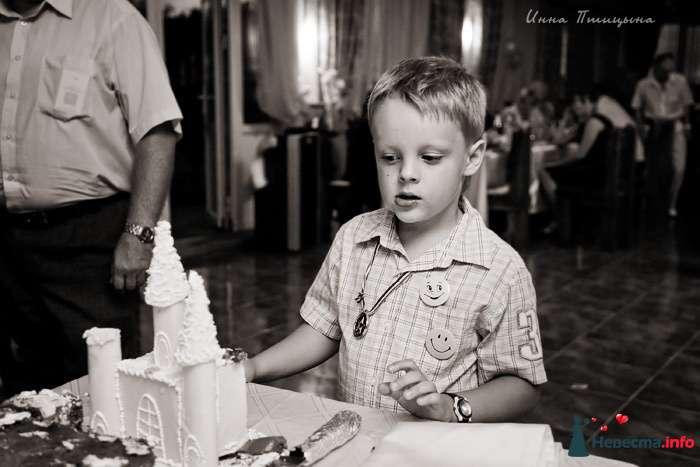 Свадебный торт - фото 114133 Фотограф Инна Птицына