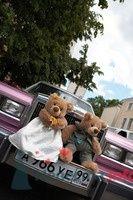 Украшение свадебного автомобиля мягкими игрушками. - фото 423 Any