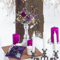 Фиолетовый декор на свадьбе