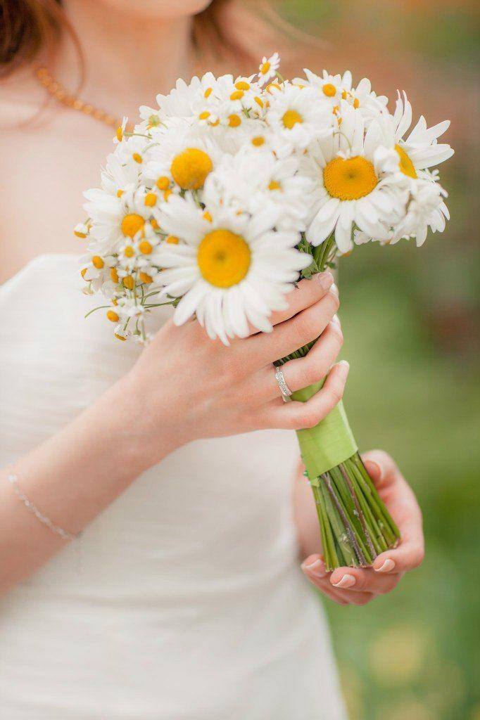 ромашка для свадьбы картинки музея используются