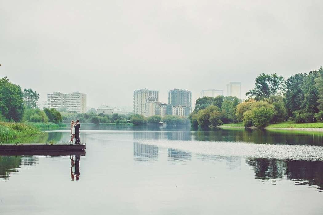 Фото 3857777 в коллекции Портфолио - Фотограф Дмитрий Толмачев