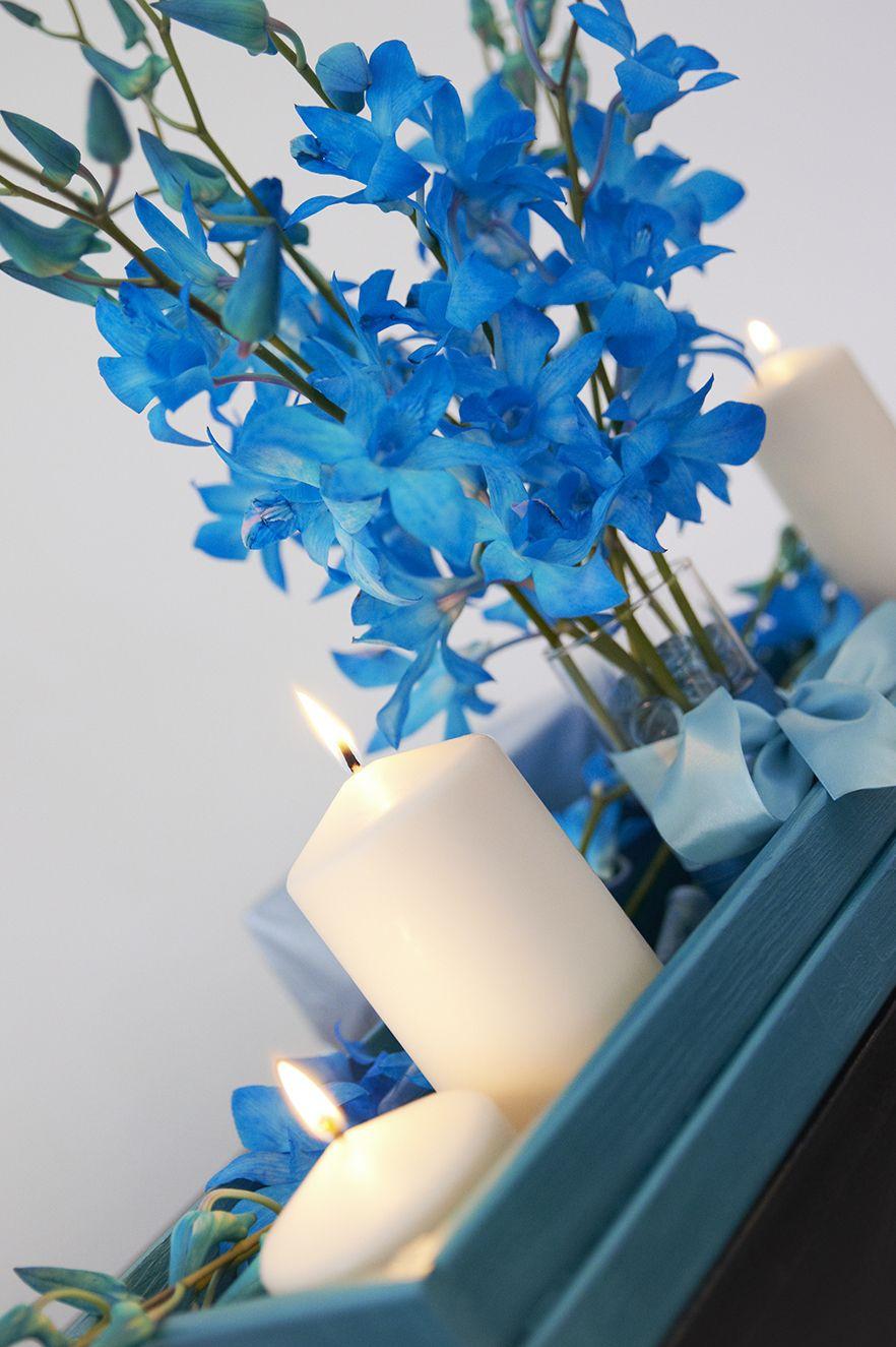 Цветов магазин, купить букет с орхидея дендробиум синяя