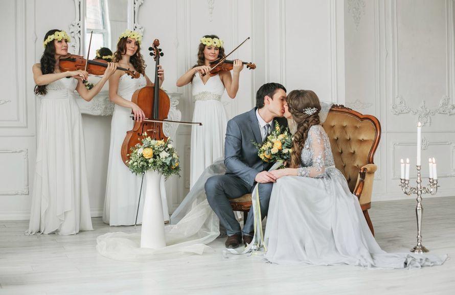 Шоу и артисты на свадьбу