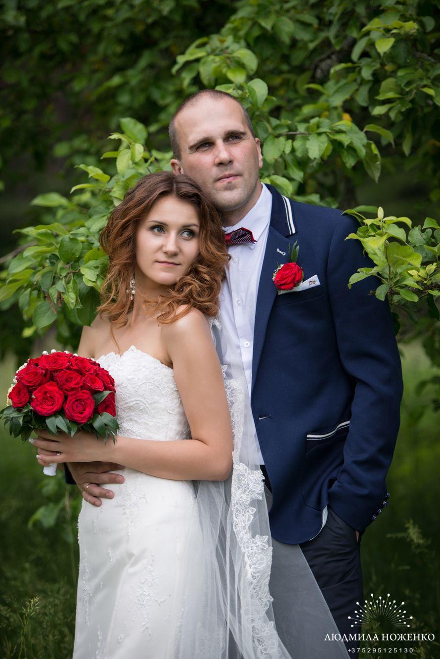 Фото 2517407 в коллекции Мои фотографии - Свадебный и семейный фотограф Людмила Ноженко
