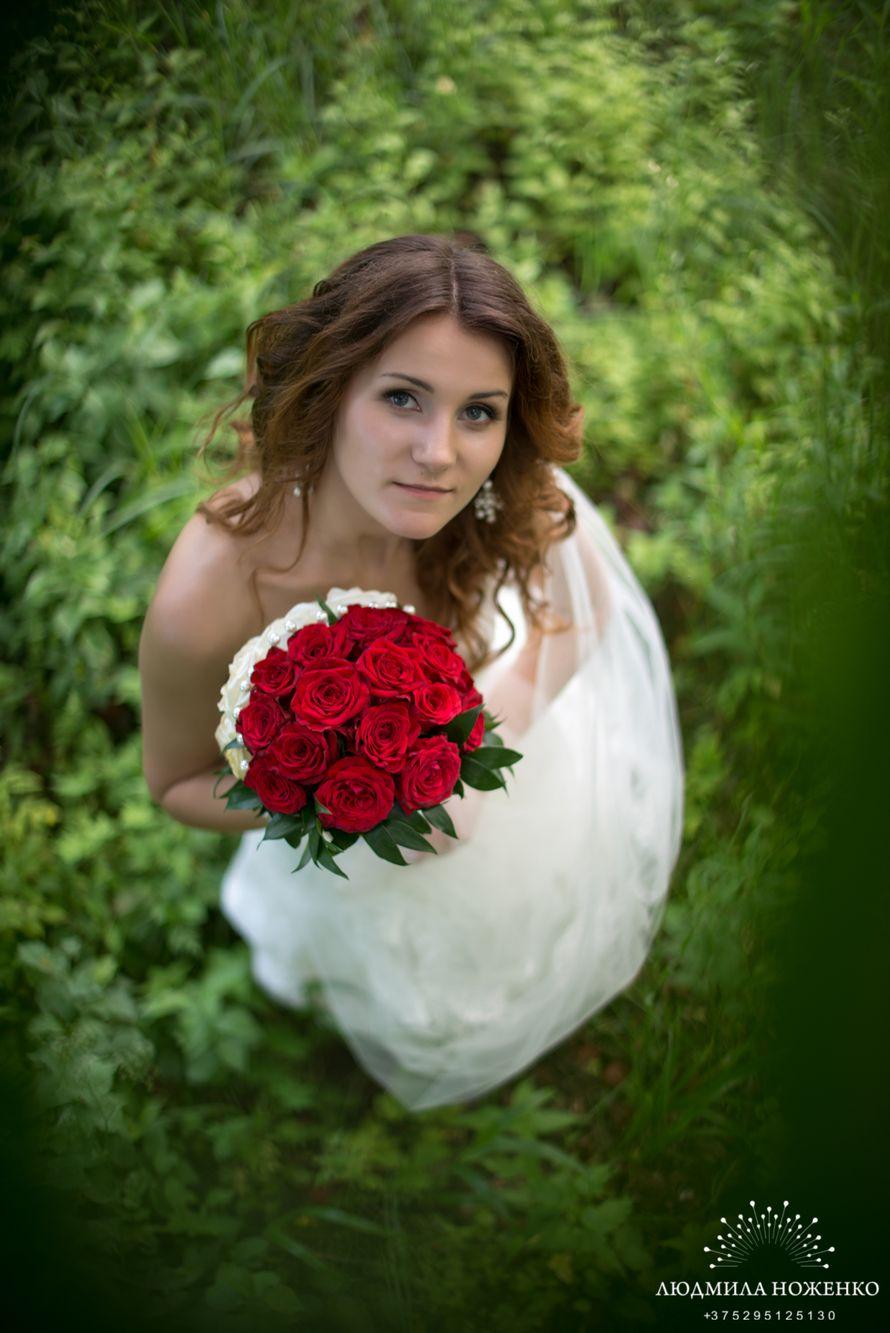 Фото 2517411 в коллекции Мои фотографии - Свадебный и семейный фотограф Людмила Ноженко