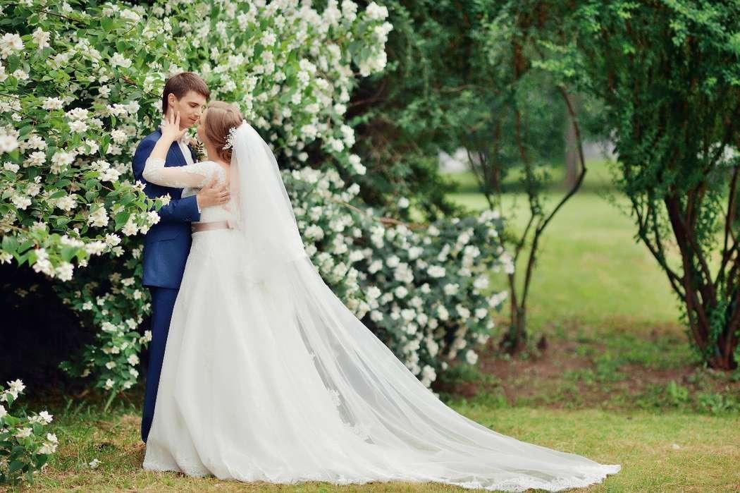 Фото 9231612 в коллекции Нежная свадьба Дмитрия и Анны - Свадебный распорядитель Яна Никитина