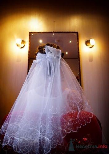 Фото 15660 в коллекции IN real WEDDING WE TRUST…Engel-Ruban - Евгений Энгель-Рубан