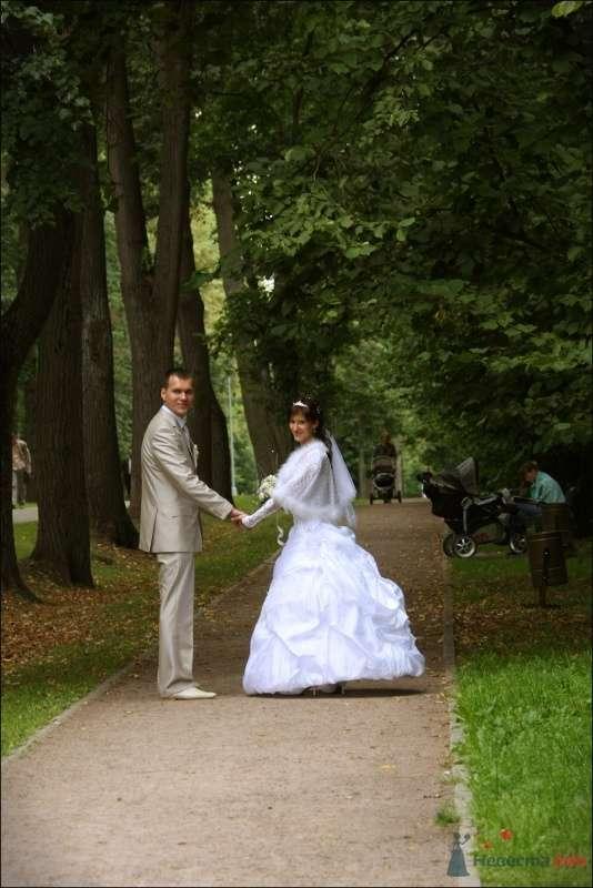 Фото 39243 в коллекции Моя Свадьба 07.08.09 - evro777